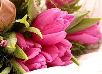 Вітаємо прекрасних жінок зі святом 8 Березня!